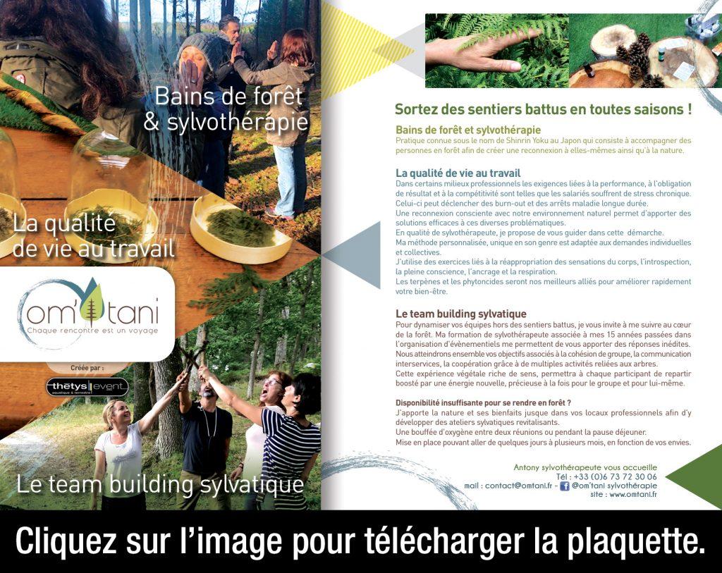 Sylvotherapie en milieu professionnel. Team building en foret. Ecologie. Indre et Loire. Region Centre. France.